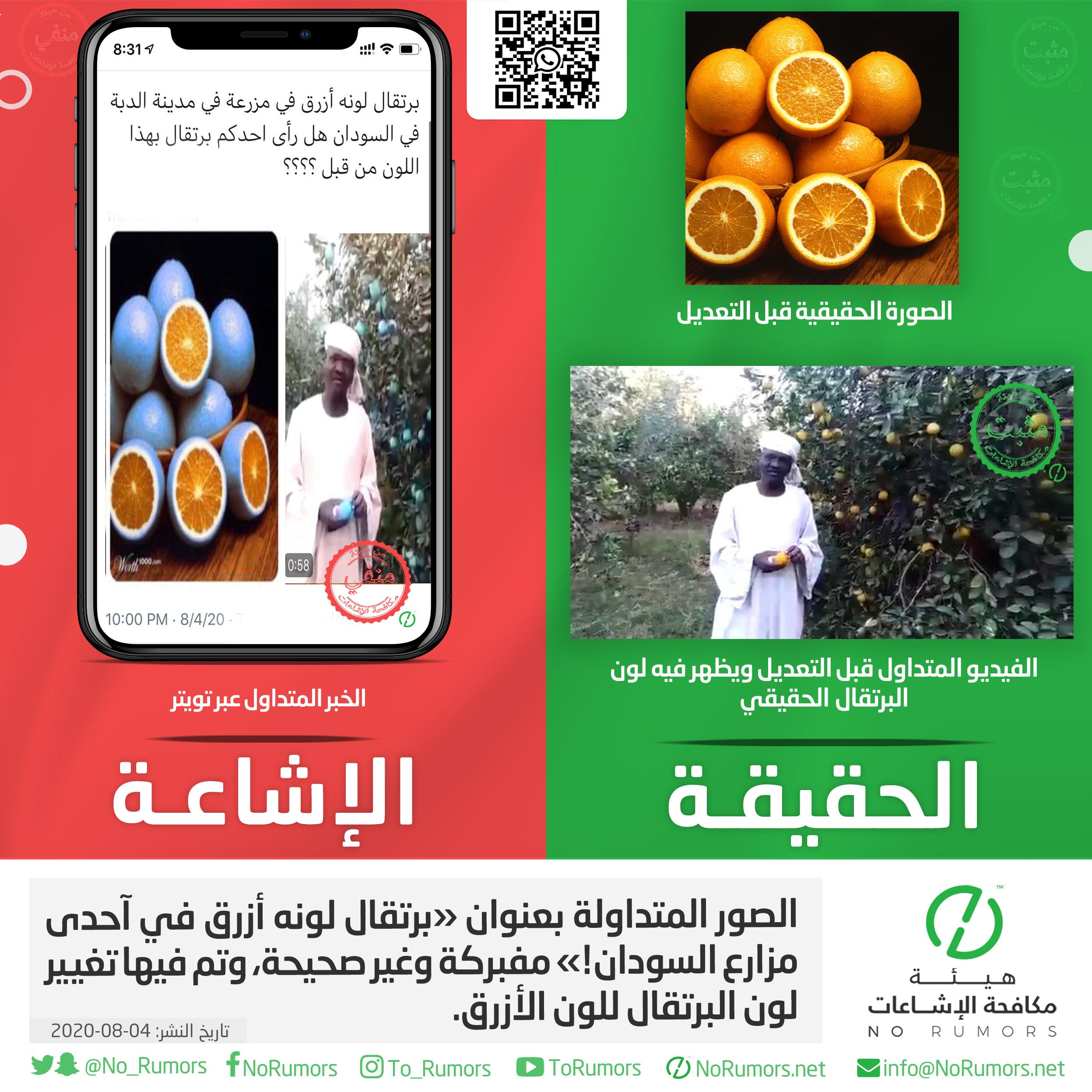 حقيقة الصور المتداولة بعنوان «برتقال لونه أزرق في آحدى مزارع السودان!»