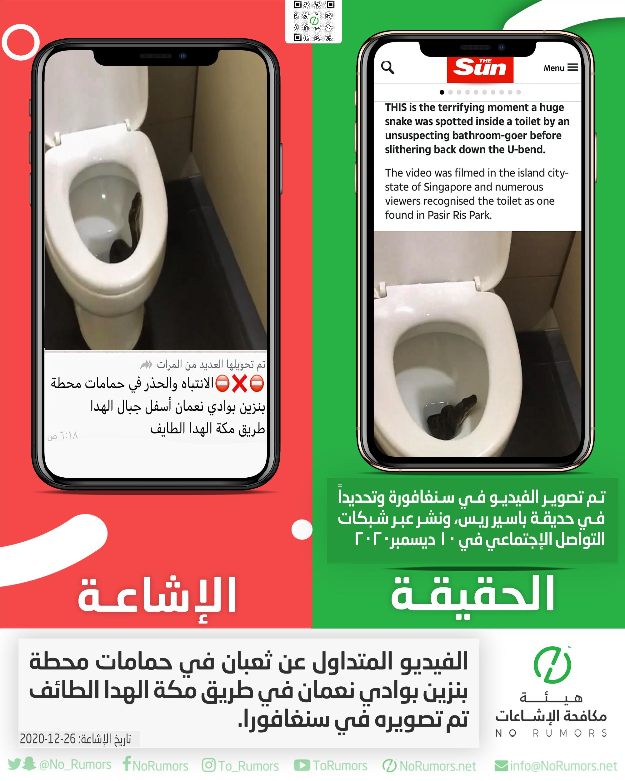 حقيقة الفيديو المتداول عن ثعبان في حمامات محطة بنزين بوادي نعمان في طريق مكة الهدا الطائف