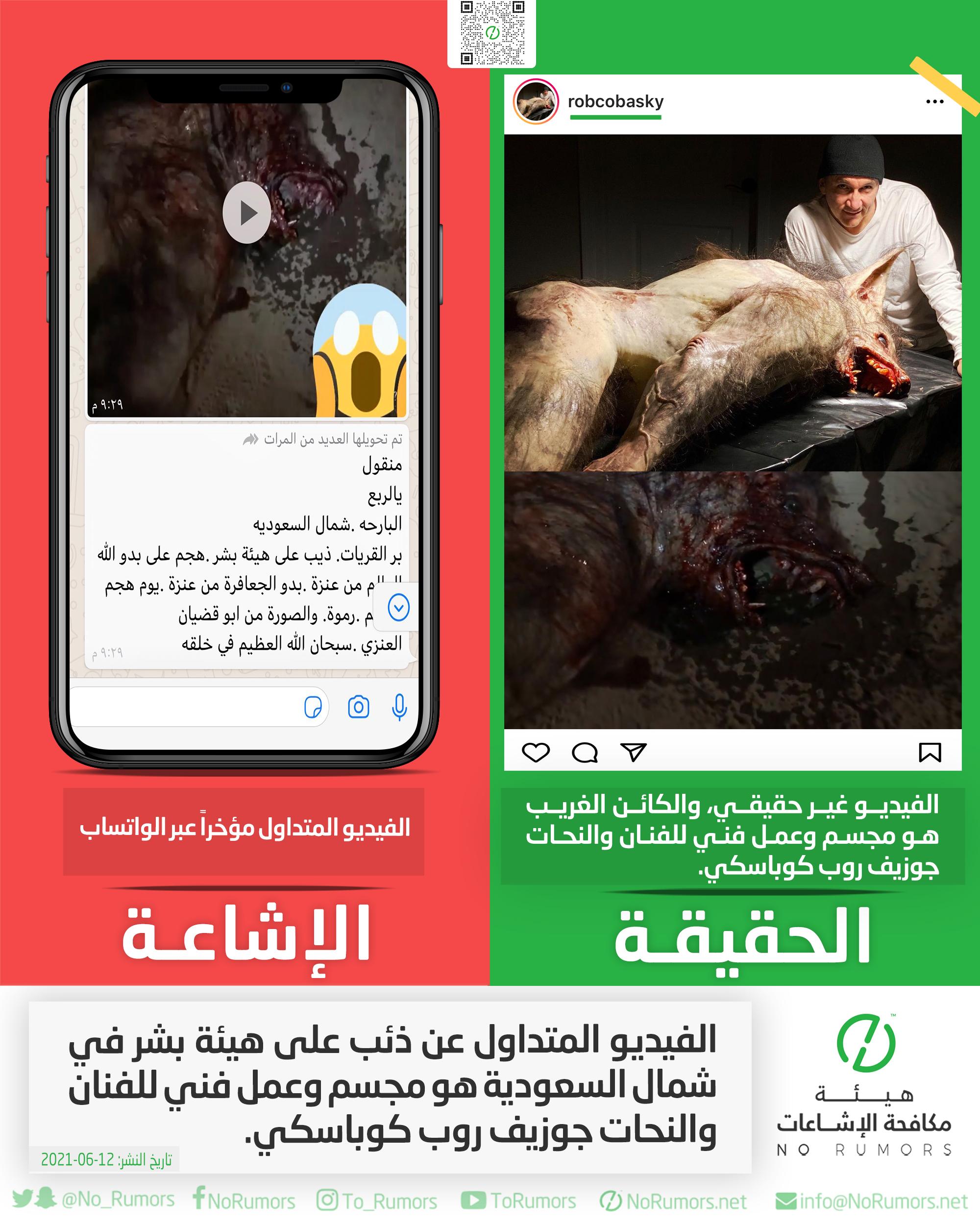 حقيقة الفيديو المتداول عن ذئب على هيئة بشر في شمال السعودية